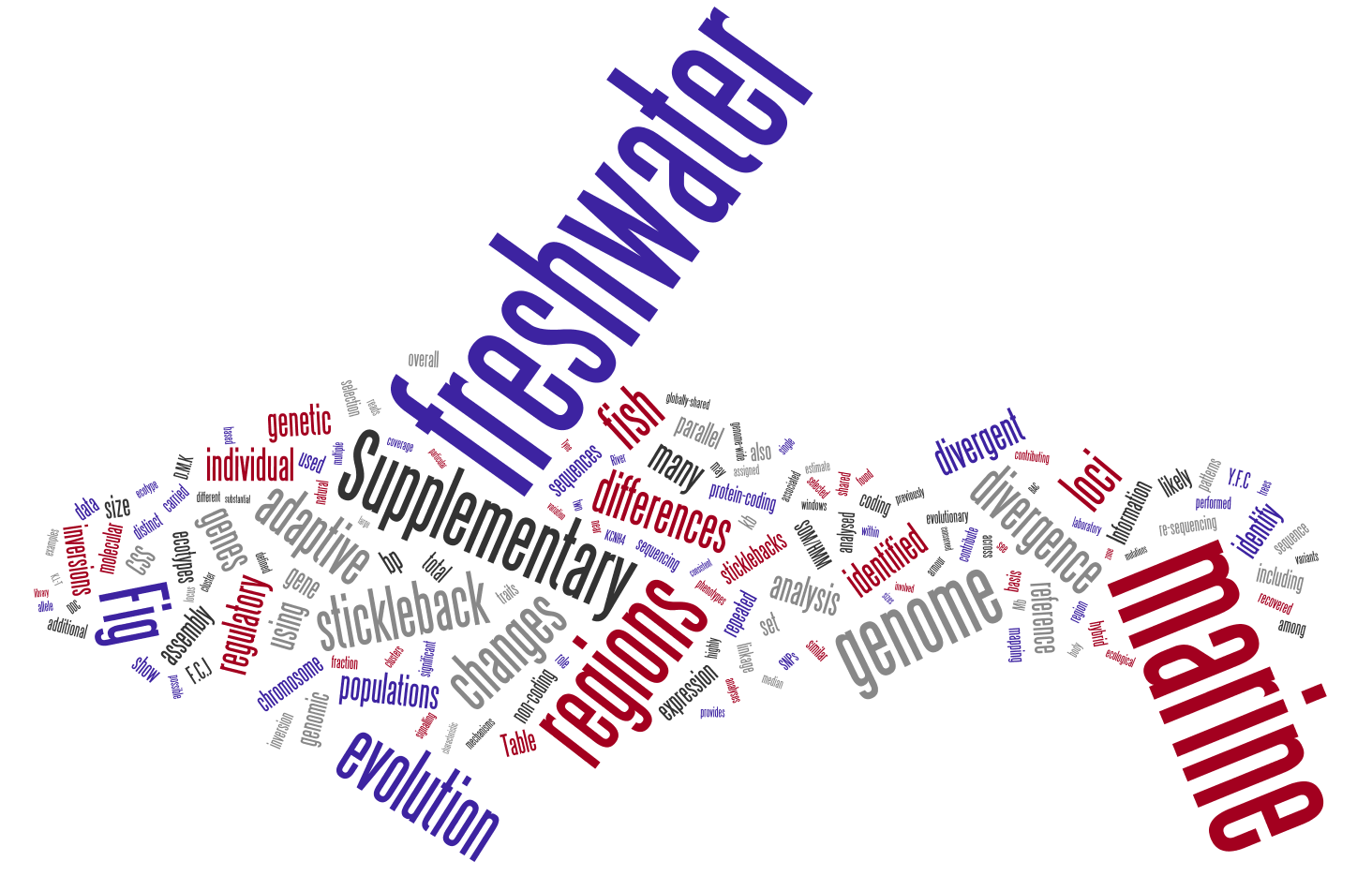 Stickleback Genome Wordle
